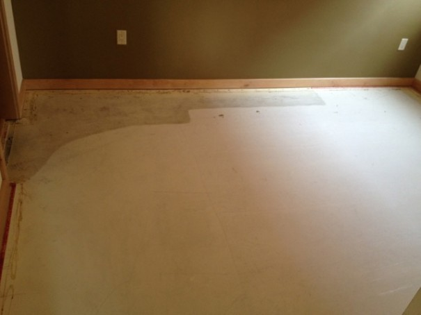 How To Permanently Remove Cat Urine From Carpet